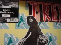 """T-Rex, Greatest Hits #162 and below - 180 Gram"" - Product Image"