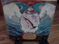 """Steve Hillage, Fish Rising OBI Box Set - 4 CDs"" - Product Image"