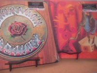 """Grateful Dead - 2 Titles- Dead Live and American Beauty"" - Product Image"