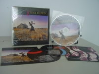 """Pink Floyd, Collection of Great Dance Songs"" - Product Image"
