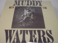 """""""Muddy Waters, King Bee"""" - Product Image"""