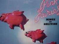 """""""Pink Fairies, Kings Of Oblivion"""" - Product Image"""