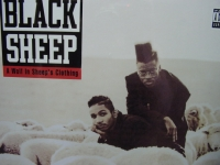 """""""Black Sheep, A Wolf In Sheep's Clothing"""" - Product Image"""