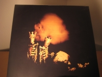 """""""Pearl Jam, Riot Act - 2 LPs - CURRENTLY SOLD OUT"""" - Product Image"""